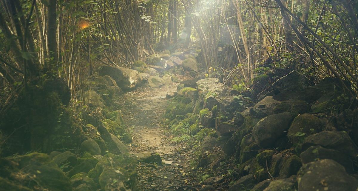 Mental toughness a prowokatywność
